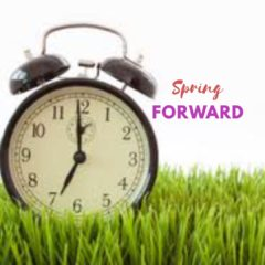 Spring Forward and Summer Day Camps